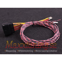 MaxxECU wiring harness for PWM module