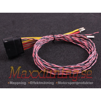 MaxxECU wiring harness for PWM module